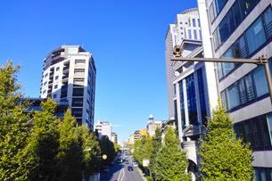 恵比寿の渋谷橋交差点の横断歩道上から見た広尾方面の景観の写真素材 [FYI01191787]