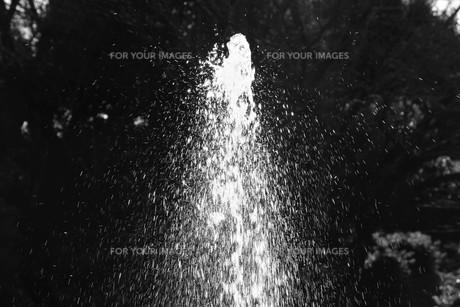 背景素材 / 水の抽象の写真素材 [FYI01191809]
