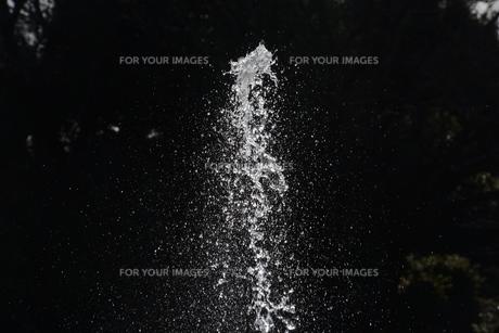 背景素材 / 水の抽象の写真素材 [FYI01191810]