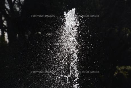 背景素材 / 水の抽象の写真素材 [FYI01191811]