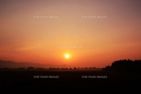 背景素材・朝日のあたる家並みシルエットの写真素材 [FYI01191913]