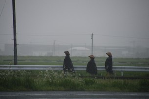 ドシャ降りの中を行く托鉢修行僧の写真素材 [FYI01191921]