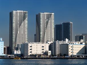 臨海エリアのタワーマンションの写真素材 [FYI01192121]