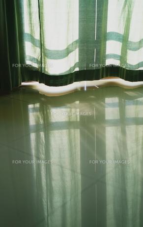 窓から差し込みやさしい光につつまれての写真素材 [FYI01192153]