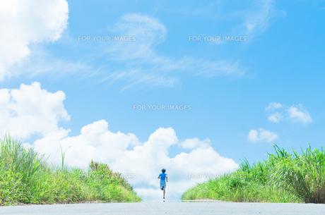 沖縄の夏を走るランナーの写真素材 [FYI01192240]