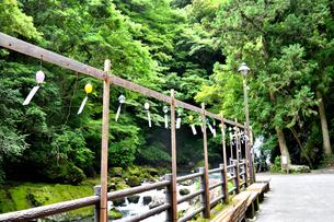 伊豆の七滝温泉風鈴の写真素材 [FYI01192439]