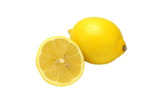 レモンの写真素材 [FYI01192773]