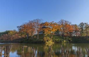 秋の高田城の風景の写真素材 [FYI01193137]