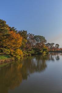 秋の高田城の風景の写真素材 [FYI01193140]