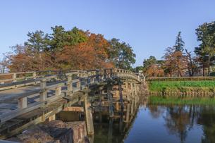秋の高田城の風景の写真素材 [FYI01193147]