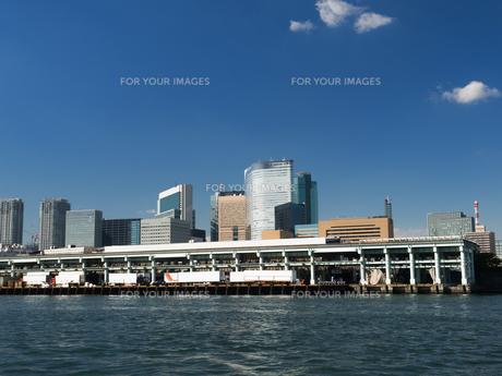 隅田川からみた築地市場の写真素材 [FYI01193208]