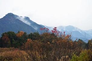 朝霧にうかぶ美しい山なみ / 九州福岡県朝倉市の写真素材 [FYI01193371]