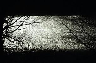 幻想的光景・背景素材の写真素材 [FYI01193504]