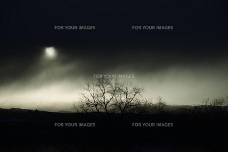 幻想的光景・背景素材の写真素材 [FYI01193507]