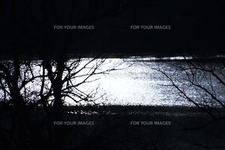 幻想的光景・背景素材の写真素材 [FYI01193520]