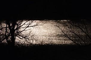 幻想的光景・背景素材の写真素材 [FYI01193521]