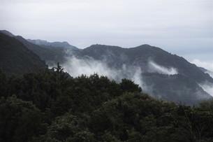 霧の山なみ・九州福岡県朝倉市の写真素材 [FYI01193683]
