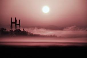 幻想的空間・朝霧の写真素材 [FYI01193697]