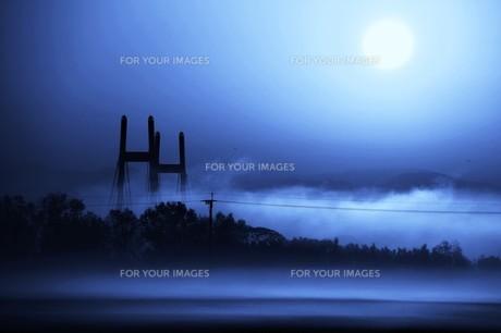 幻想的空間・朝霧の写真素材 [FYI01193699]