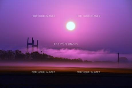 幻想的空間・朝霧の写真素材 [FYI01193700]