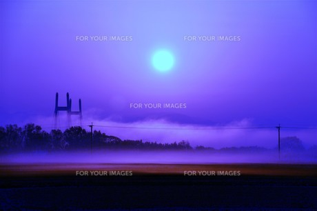 幻想的空間・朝霧の写真素材 [FYI01193701]