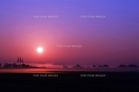 幻想的空間・朝霧の写真素材 [FYI01193702]