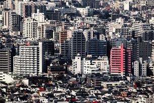 東京の混み合った住宅の写真素材 [FYI01193758]