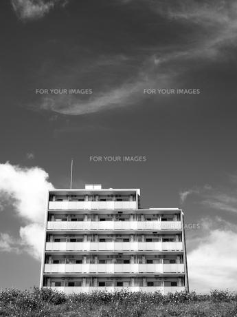 川辺に建つマンションの写真素材 [FYI01193807]