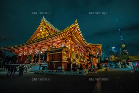 浅草寺とスカイツリーの写真素材 [FYI01193871]