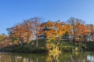 秋の高田城の風景の写真素材 [FYI01193886]
