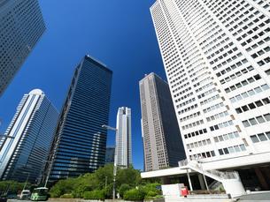 新宿高層ビル街の写真素材 [FYI01194031]
