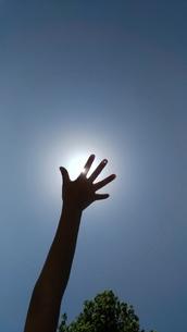 手のひらを太陽にの写真素材 [FYI01194087]