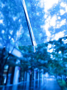雨の丸の内の写真素材 [FYI01194127]