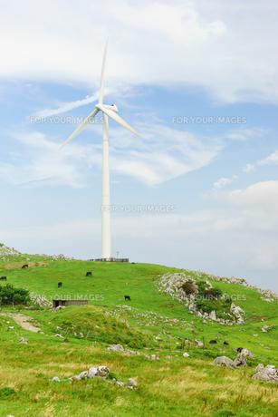 四国カルストと風力発電の写真素材 [FYI01194240]