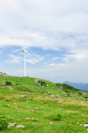 四国カルストと風力発電の写真素材 [FYI01194241]