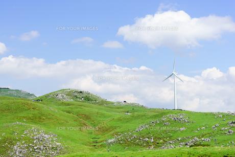 四国カルストと風力発電の写真素材 [FYI01194252]
