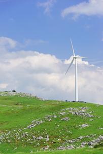 四国カルストと風力発電の写真素材 [FYI01194253]