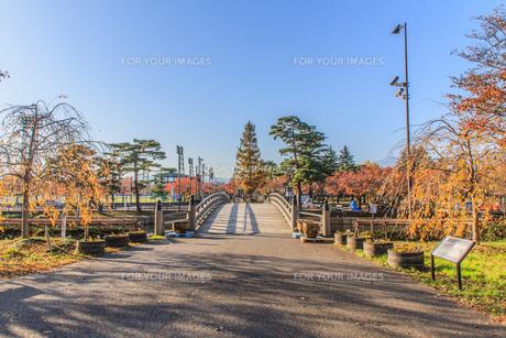 秋の高田城の風景の写真素材 [FYI01194285]
