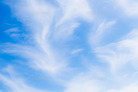 雲絵柄の写真素材 [FYI01194394]