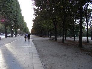 シャンゼリゼの歩道の写真素材 [FYI01194412]