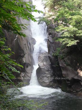 滝の写真素材 [FYI01194431]