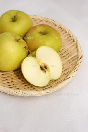 青りんご トキの写真素材 [FYI01194549]