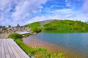 新緑の八方池の写真素材 [FYI01194595]