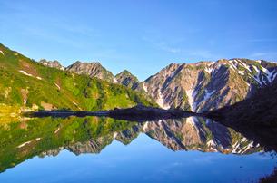 朝日を浴びた新緑の八方池と白馬三山の写真素材 [FYI01194599]