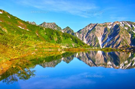 朝日を浴びた新緑の八方池と白馬三山の写真素材 [FYI01194601]