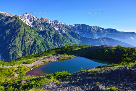 八方尾根から見た、朝日を浴びた新緑の八方池と白馬三山の写真素材 [FYI01194609]