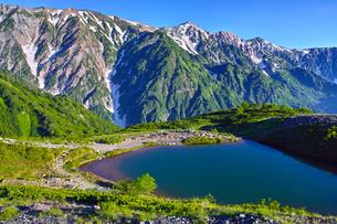 八方尾根から見た、朝日を浴びた新緑の八方池と白馬三山の写真素材 [FYI01194610]