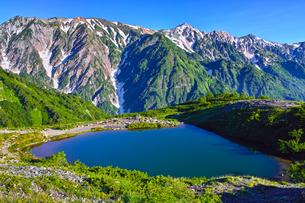 八方尾根から見た、朝日を浴びた新緑の八方池と白馬三山の写真素材 [FYI01194611]