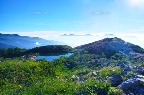 八方尾根から見た、朝日を浴びた新緑の八方池の写真素材 [FYI01194617]