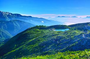八方尾根から見た、朝日を浴びた新緑の八方池の写真素材 [FYI01194618]